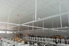 fabrika tavanı